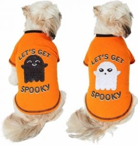 """two dogs wearing same orange """"Let's Get Spooky"""" shirt, one showing white sequin ghost side and the other showing black sequin ghost side"""