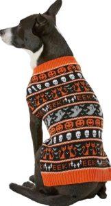 dog in halloween fair isle sweater