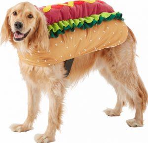 dog wearing a hot dog Halloween costume