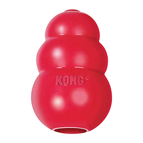 Red rubber KONG classic dog toy