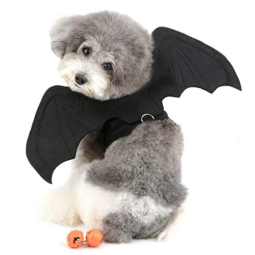 dog wearing Bat Wing Harness with D Ring Dog Costume