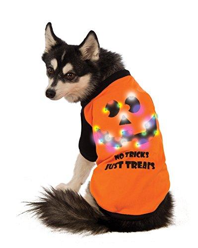 "dog wearing ""No Tricks Just Treats"" LED jack-o'-lantern print Halloween shirt"