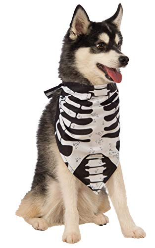 dog wearing Rubie's Skeleton Bandana Dog Costume