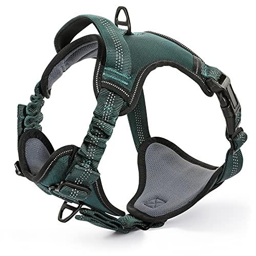 dark green dog harness