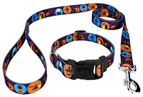 Country Brook Petz Witches' Brew Dog Collar and Leash