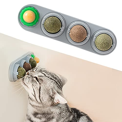 Cat rubs against the Potaroma Wall Cat Toy