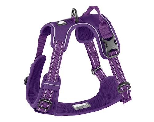 Purple dog harness