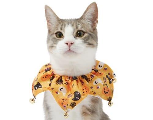 ruffled cat collar in Halloween print