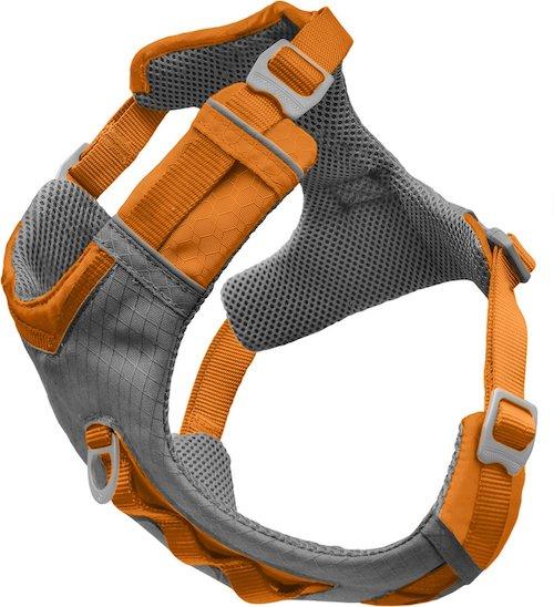 Orange and grey dog harness