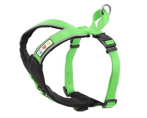 lime green dog harness