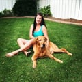 The Good Life dog boarding & pet sitting