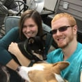 Robinson's Ruff House dog boarding & pet sitting