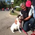 Ray's Pet Sitting dog boarding & pet sitting