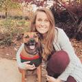 Jenna's Dog Care dog boarding & pet sitting