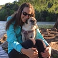 Senior and Special Needs Pug Sitter dog boarding & pet sitting
