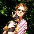 WET NOSES dog boarding & pet sitting