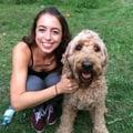 Nina's Pawfect Dog Care dog boarding & pet sitting