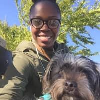 Ebony's dog boarding