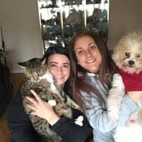 Jennifer & Francisca's dog boarding
