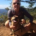 A Mississippi Dog Vacation dog boarding & pet sitting