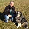 TS Arnott Dog Services dog boarding & pet sitting