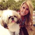 Beth's Glimpse of Greyhawk dog boarding & pet sitting