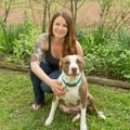 Girl Next Door Pet and Farm Sitting dog boarding & pet sitting