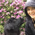 Lonsdale & N. Van Active Dog Sitter dog boarding & pet sitting