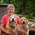 4 Paws Inn dog boarding & pet sitting