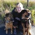 Puppyland! dog boarding & pet sitting