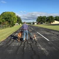Charlie and Madeleine 's dog boarding