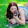Vicky's Dog Care dog boarding & pet sitting