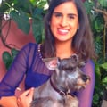 Indira & Jorge's Dog Watch dog boarding & pet sitting