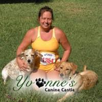 Yvonne's dog boarding