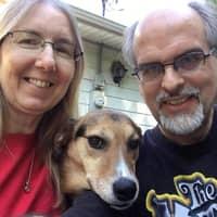 Duane & Tammy's dog boarding