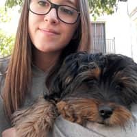 Alojamiento de perros de Patricia