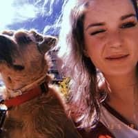 Alojamiento de perros de Victoria