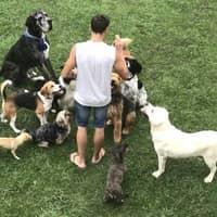Alojamiento de perros de Katia