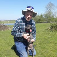 Graham's dog day care