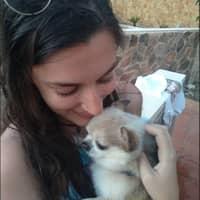 Alojamiento de perros de Shani