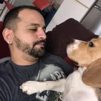 L'hébergement pour chien de Andeson