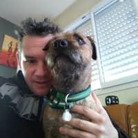 L'hébergement pour chien de Jérôme