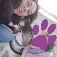 Dog sitting soggiorno di Valeria