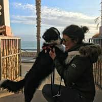 Alojamiento de perros de Gemma