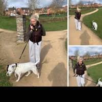 Leanne's dog boarding
