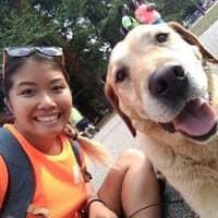 L'hébergement pour chien de My-Linh