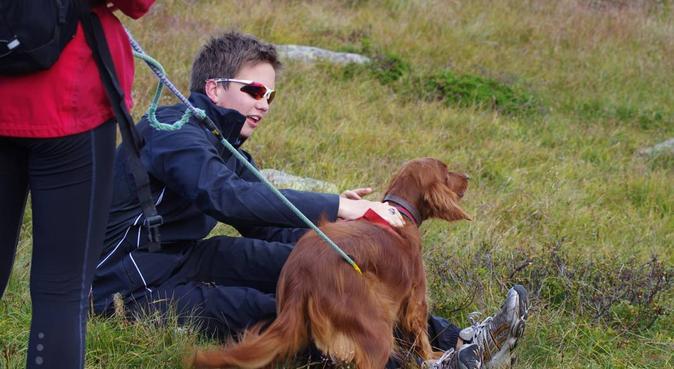 Luftetur-kompis. Ansvarlig lek og morro!, hundepassere i Oslo