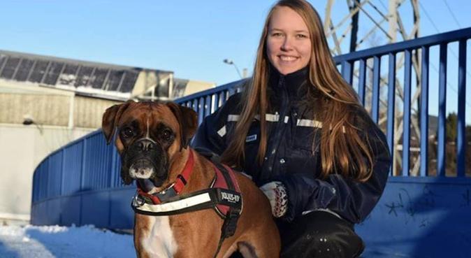 Tilpasningsdyktig og ute etter å yte hundens beste, hundepassere i Oslo
