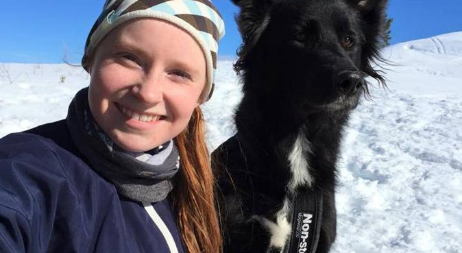 Elsker tur i all slags vær!:), hundepassere i Hokksund