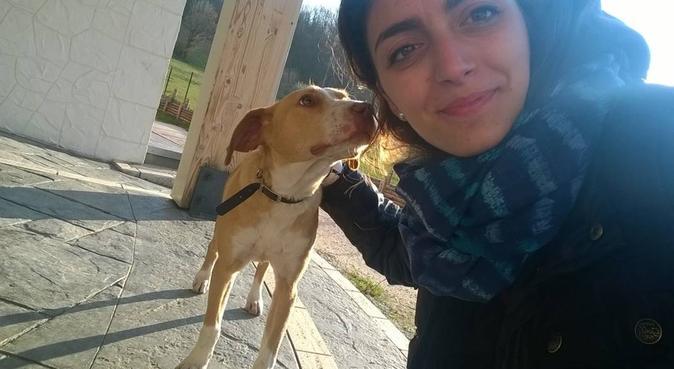 Coccole e tanto divertimento, dog sitter a Napoli